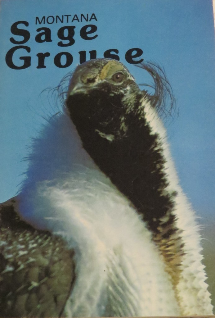 Montana Sage Grouse a bulletin for the Montana Department of Fish and Game written by Richard Wallestad