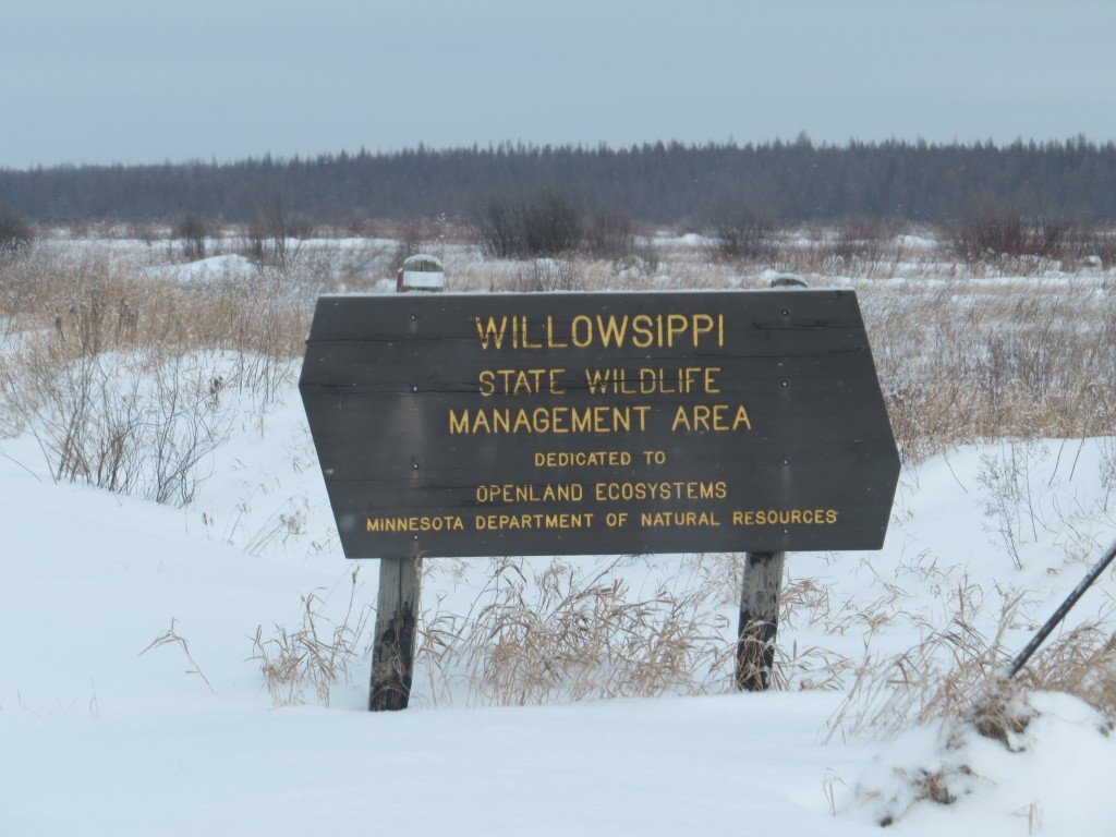 Willowsippi Wildlife Management Area