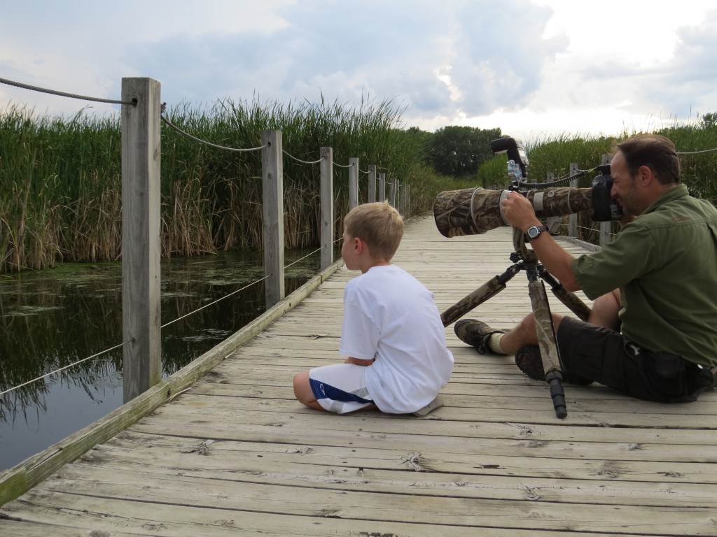 Evan watching a Least Bittern with Stan Tekiela.