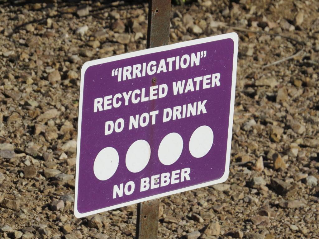 no beber
