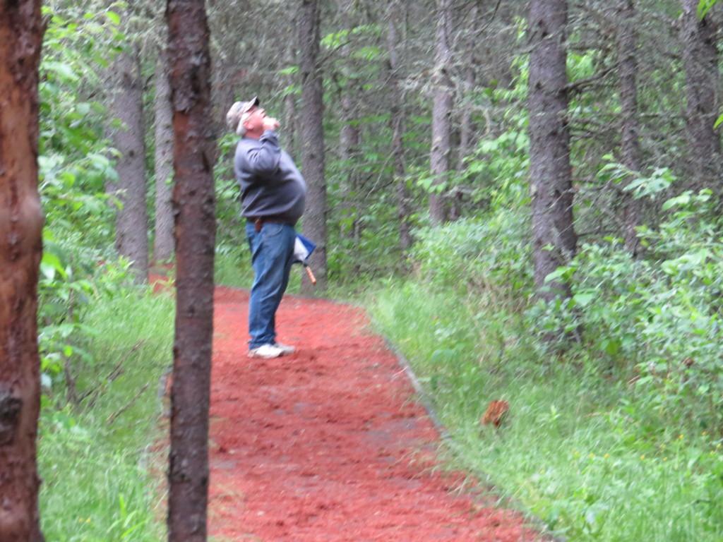 Dad Bog Walk