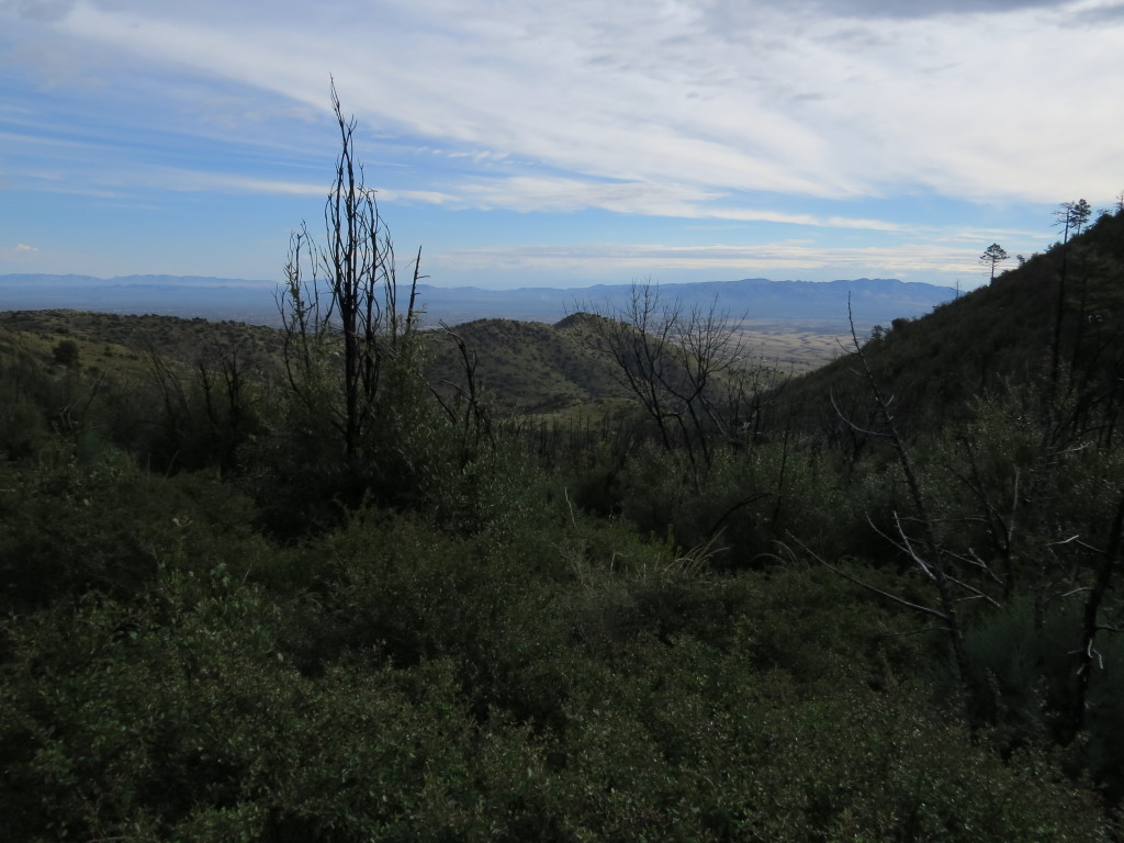 Hunter Canyon